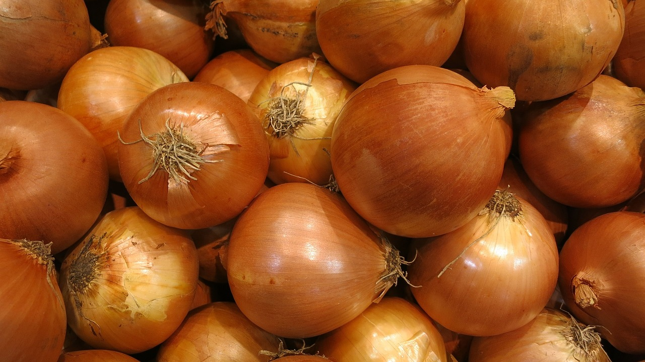 Hearts Love Yellow Onions on Plant Disease Book